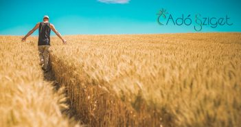 A mezőgazdasági őstermelő biztosítás és járulékfizetése