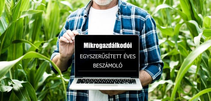 Mikrogazdálkodói egyszerűsített éves beszámoló